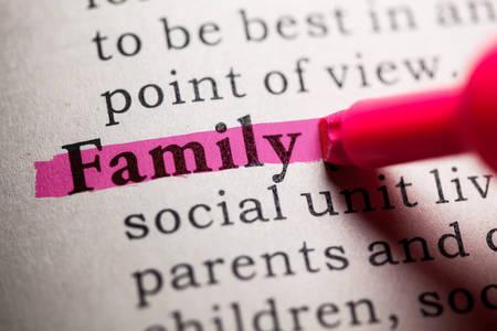 가짜 사전, 단어 가족의 사전 정의.