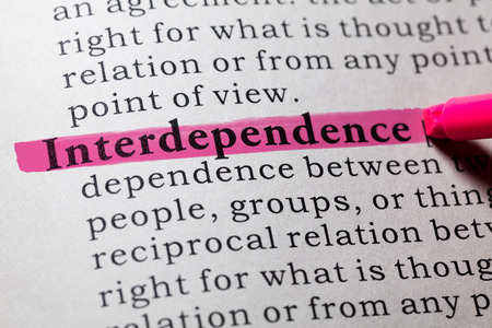 dictionary definition: Fake Dictionary, Dictionary definition of the word interdependence.