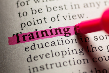 Fake Dictionary, definition of the word training.
