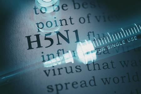 가짜 사전, 단어 H5N1 독감의 사전 정의.
