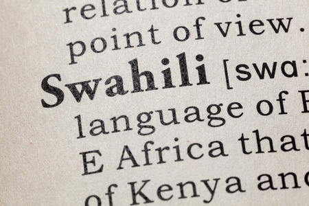 printing out: Fake Dictionary, Dictionary definition of the word Swahili. including key descriptive words.