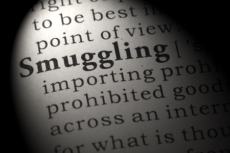 Dictionary definition of the word smuggling. including key descriptive words.