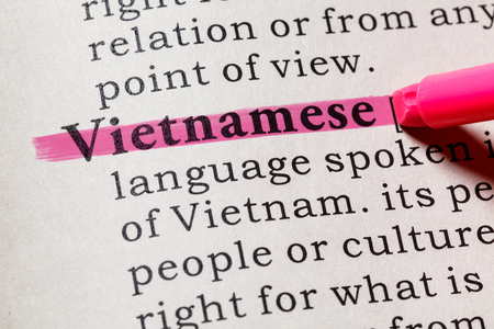 Fake Dictionary, Dictionary definition of the word Vietnamese. including key descriptive words.
