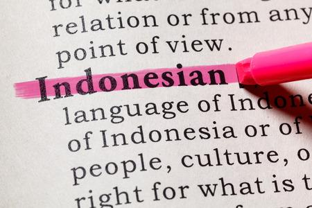 Fake Dictionary, Dictionary definition of the word Indonesian. including key descriptive words. Banco de Imagens