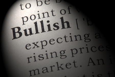 Fake Dictionary, Dictionary definition of the word bullish. including key descriptive words.