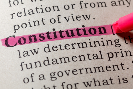 Fake Dictionary, Dictionary definition of the word constitution. including key descriptive words.