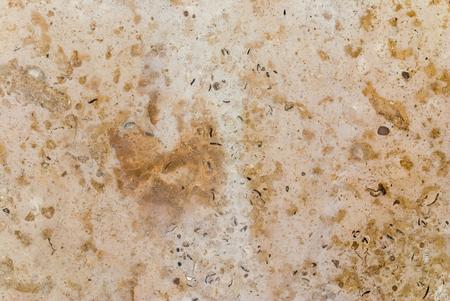Portugues marble