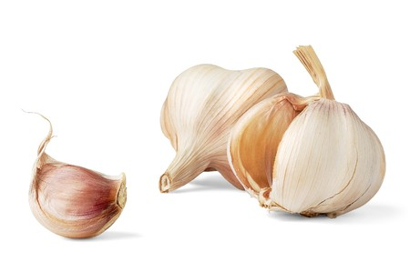 Garlic isolated on white photo