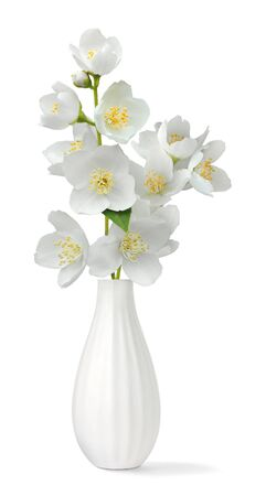 small group of objects: Small vase with jasmin isolated on white