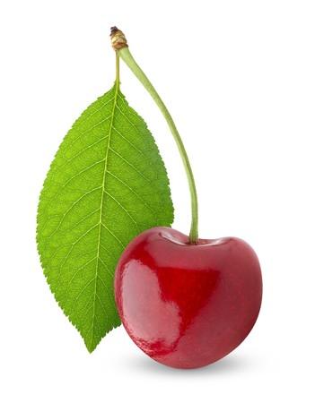 kersenboom: Zoete kers op wit wordt geïsoleerd  Stockfoto