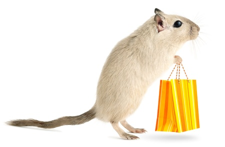 Cute little gerbil with with shopping bag isolated on white background Stock Photo