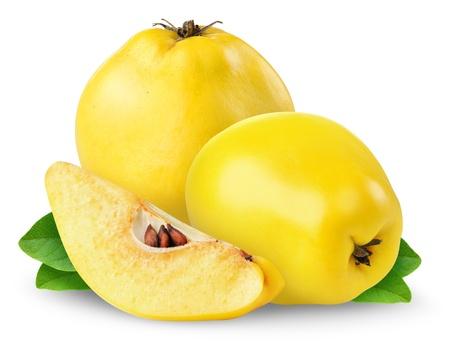 membrillo: Frutas de membrillo aislados en blanco Foto de archivo