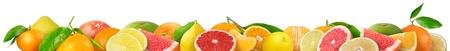 Beautiful citrus fruits border photo