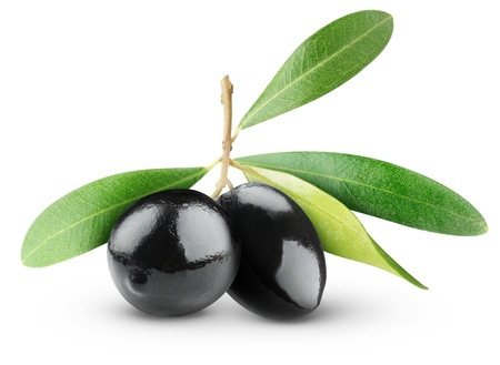 Two black olives on branch with leaves isolated on white Stock Photo - 9722665