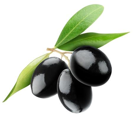 Drie zwarte olijven op tak met bladeren geïsoleerd op wit Stockfoto