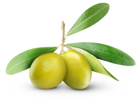 Twee groene olijven op tak met bladeren op wit wordt geïsoleerd