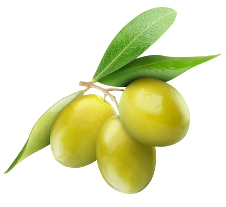 Three green olives on branch with leaves isolated on white