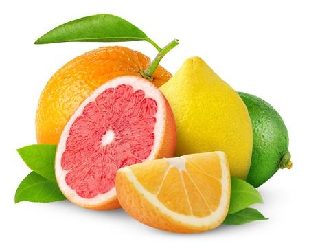 Citrus vruchten geà ¯ soleerd op wit