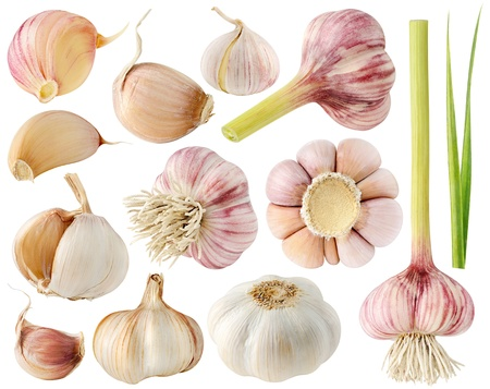 garlic cloves: Garlic collection isolated on white Stock Photo