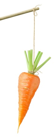 Carrot dangling on a string isolated on white