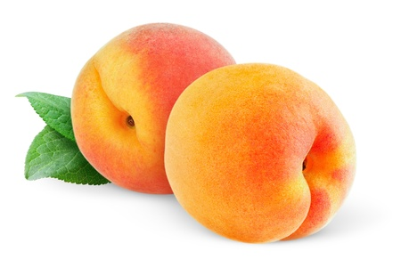 Two peaches  or apricots  isolated on white