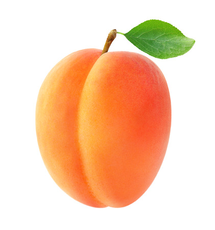 Fresh apricot isolated on white