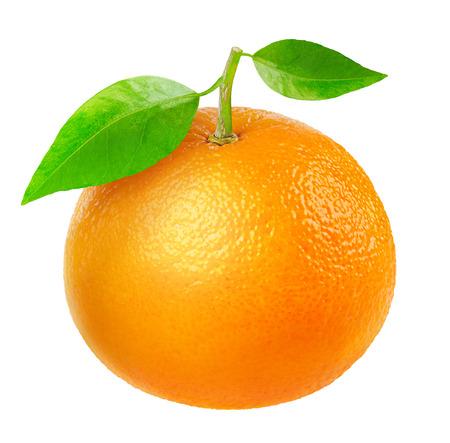 Tangerine geïsoleerd op wit Stockfoto