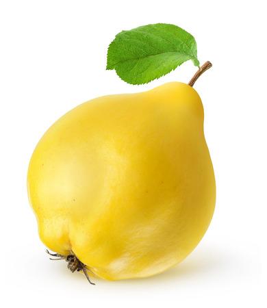 마르 멜로 과일 흰색으로 격리 스톡 콘텐츠