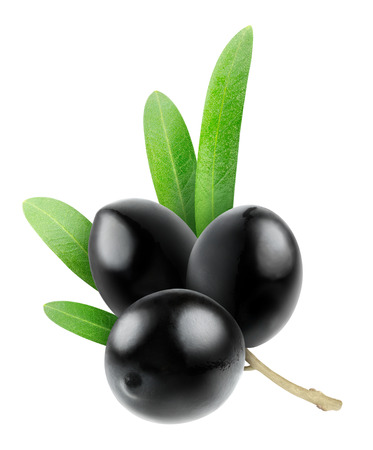 olive: Branch with olives isolated on white