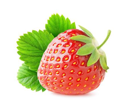 딸기 흰색에 고립