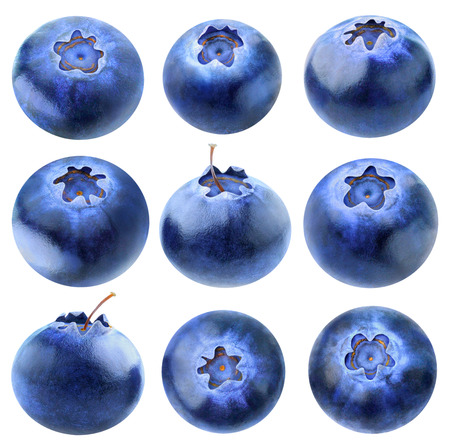 Collection of blueberries isolated on white background, with clipping path