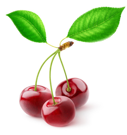 isolated on green: Three cherries with leaves over white background,