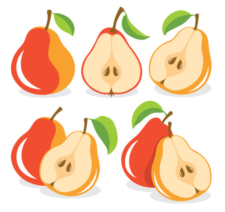 pears: Red pears vector illustration