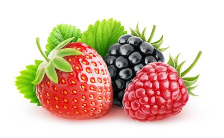 raspberry: Wild berries over white background