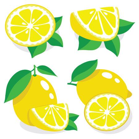 Collection of lemons illustrations  イラスト・ベクター素材