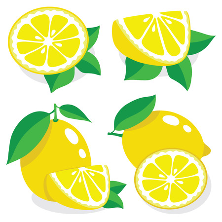 Collection of lemons illustrations Vectores