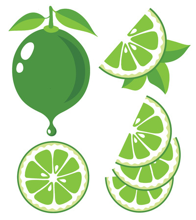 Collection of limes  illustrations Reklamní fotografie - 43292936