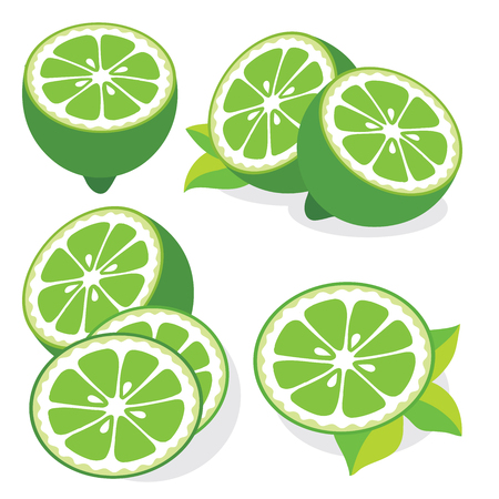 lime: Collection of limes vector illustrations