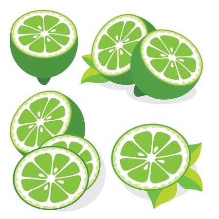 Het verzamelen van limoenen vector illustraties