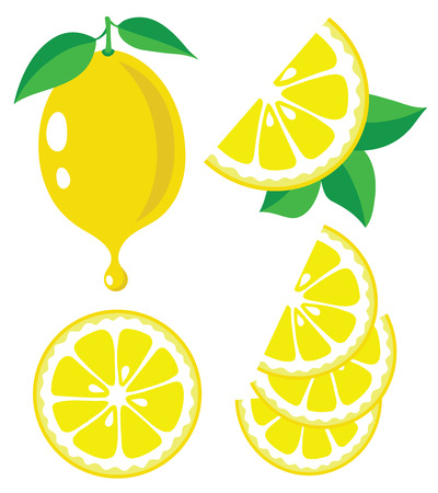 Collection of lemons vector illustrations  イラスト・ベクター素材