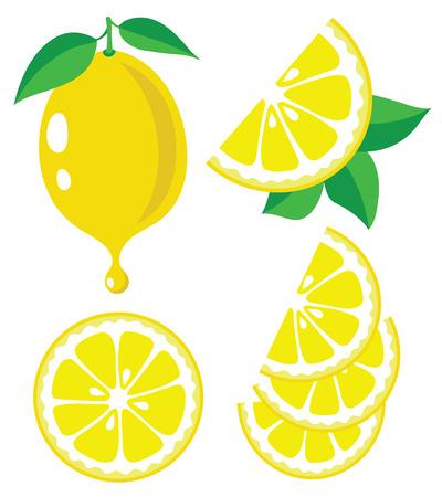 Collection of lemons vector illustrations Vettoriali