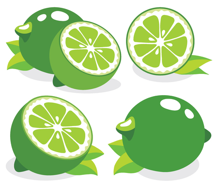 food icon: Collection of limes vector illustrations