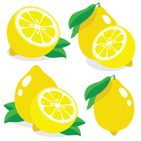 fresh food: Collection of lemon vector illustrations