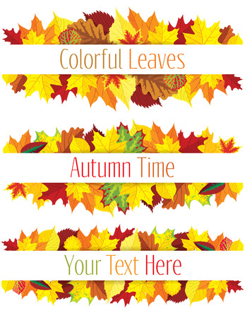 Collection of colorful autumn leaves border, vector illustration Illustration
