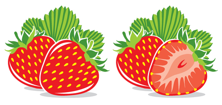 macro leaf: Two vector strawberries isolated on white Illustration