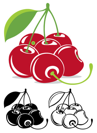 cherry: Vector cherries in color and black and white