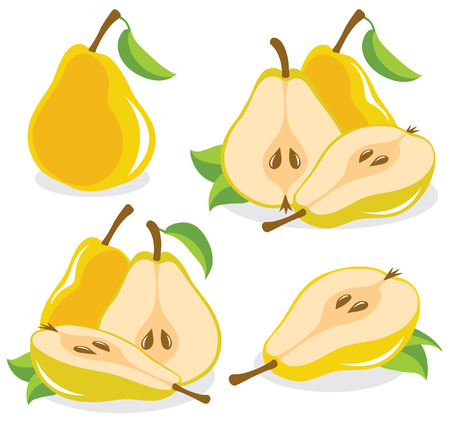Yellow pears vector illustration