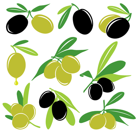 greek food: Vector olives collection, black and green