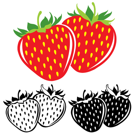 Vector strawberries in color and black and white Çizim