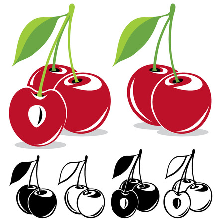 cherries: Vector cherries in color and black and white